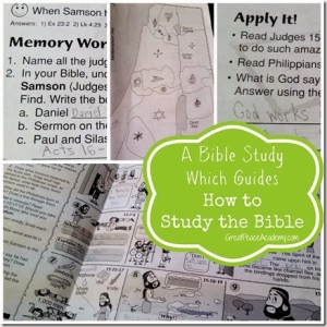 Bible Study Guide that guides in how to study the Bible