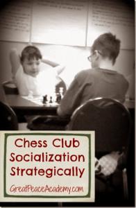 chess club for strategic socialization