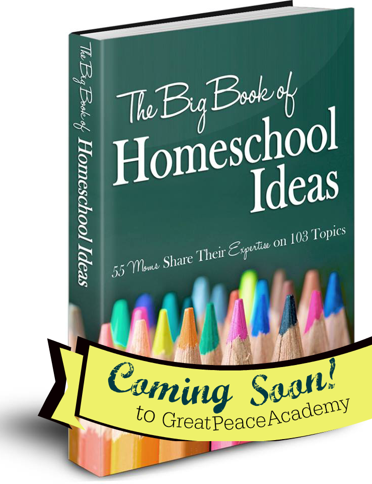 The Big Book of Homeschool Ideas find it at Great Peace Academy