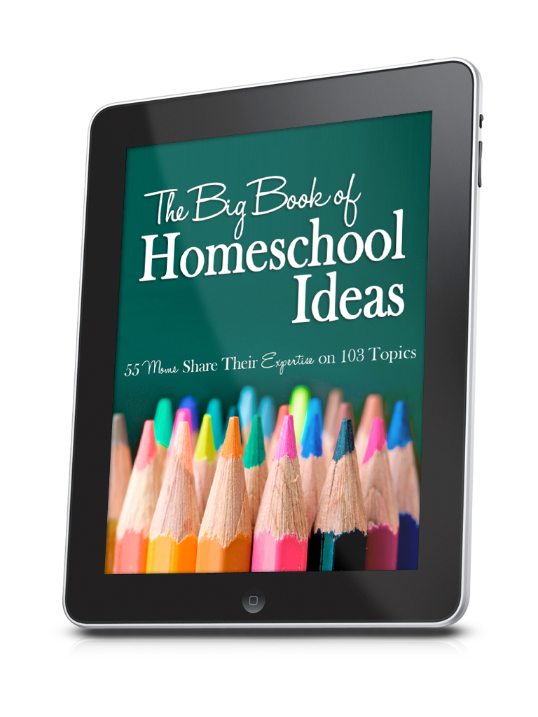 The Big Book of Homeschool Ideas. find it at Great Peace Academy