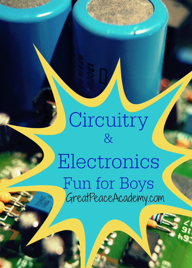 Electronics Fun for Boys