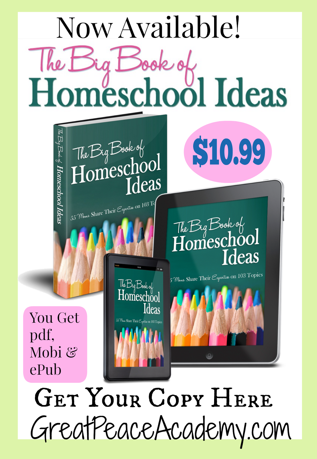 The Big Book of Homeschool Ideas 55 Moms Share Their Expertise on 103 Topics