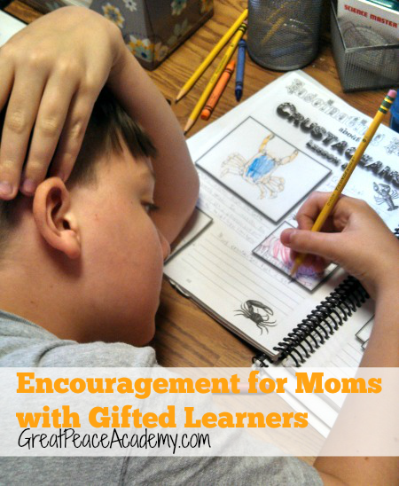 Encouragement for Homeschoolers of Gifted Learners | GreatPeaceAcademy.com #ihsnet