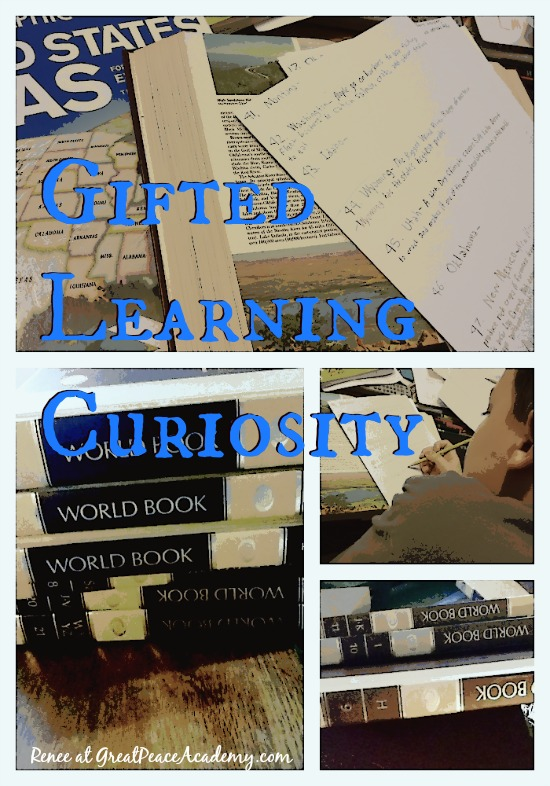 Gifted Learning Curiosity: Encouraging a child's desire to learn. by Renee at Great Peace Academy